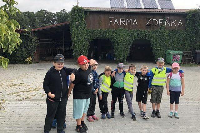 bg_farma